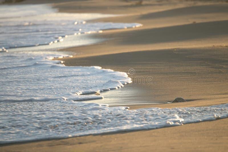 Chiuda su dell'onda sulla spiaggia immagini stock libere da diritti