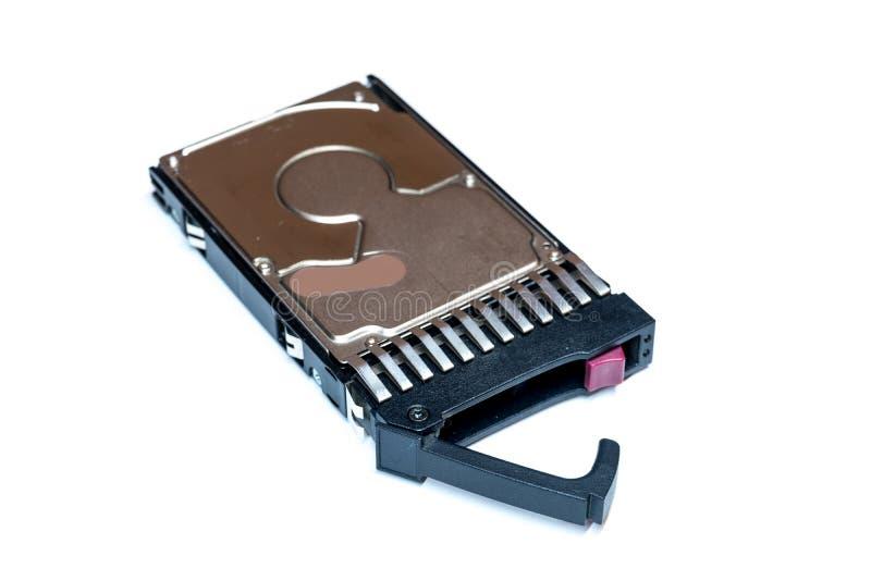 Chiuda su dell'unità disco calda HDD del computer della spina SRS in vassoio isolato fotografia stock