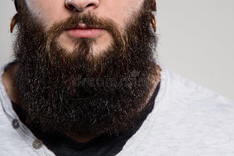 Chiuda su dell'uomo lungo dei baffi e della barba immagini stock
