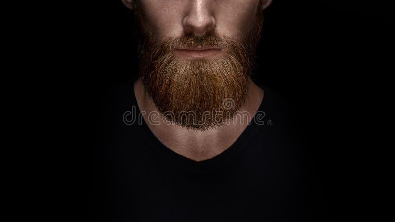 Chiuda su della barba e dei baffi lunghi dell'uomo barbuto fotografia stock libera da diritti