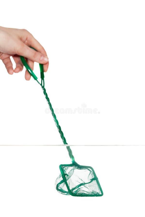 Chiuda su della mano con guadino nel fishbowl immagine stock libera da diritti