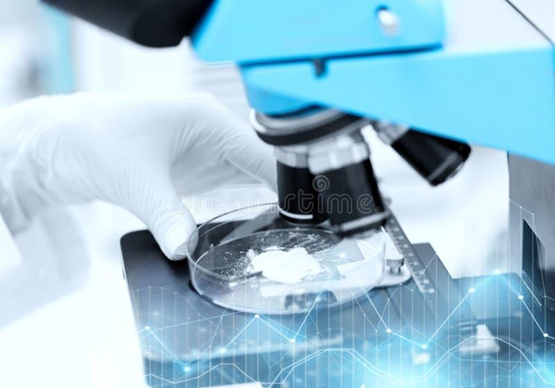 Chiuda su della mano con il campione della polvere e del microscopio fotografia stock