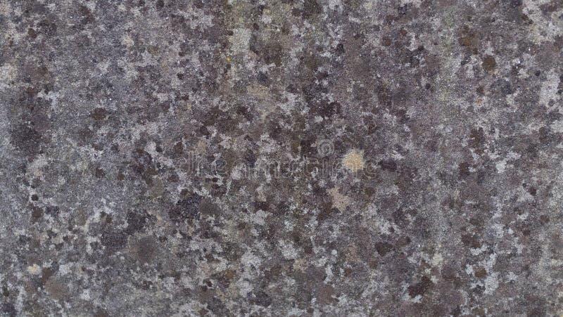 Chiuda su della parete di pietra porpora immagini stock