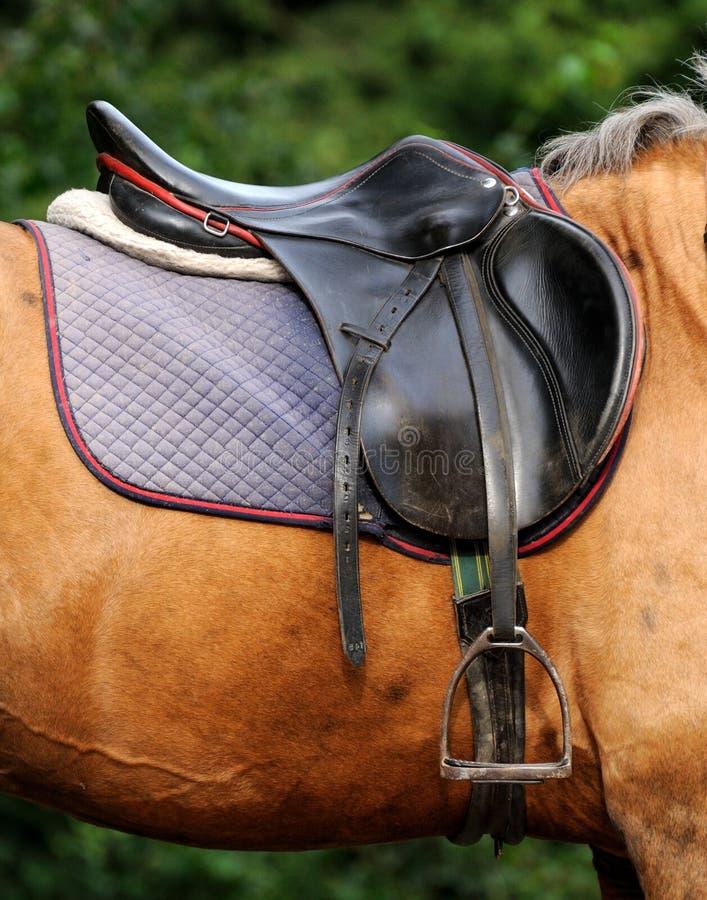 Chiuda su della sella del cavallo fotografie stock libere da diritti