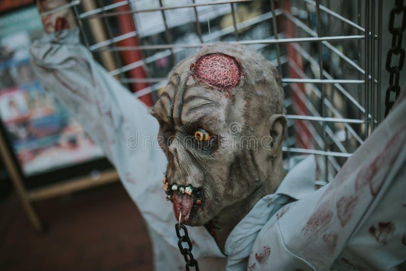 Chiuda su della testa dello zombie bloccata e chiodata nell'per recintare la via fotografia stock libera da diritti