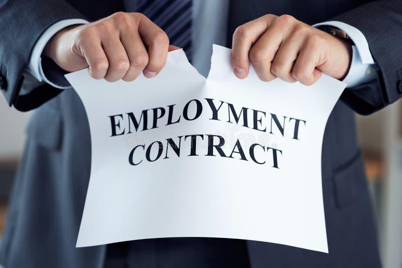 Chiuda su delle mani dell'uomo d'affari che tagliato il contratto di lavoro immagine stock libera da diritti