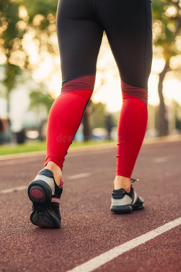 Chiuda su delle scarpe del ` s delle donne che camminano all'aperto in scarpe da corsa da dietro Abiti sportivi e scarpe da tenni immagini stock libere da diritti