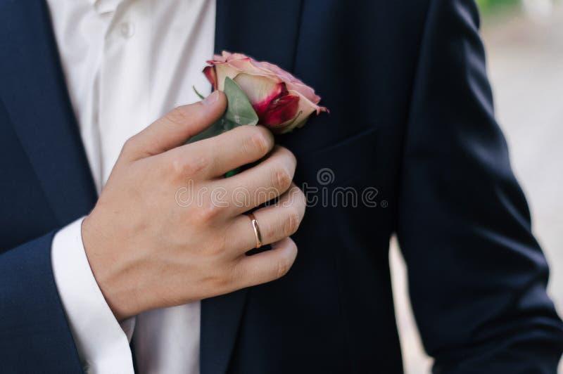Chiuda su dello sposo che appunta un boutonniere ad un vestito sui precedenti del giardino verde immagine stock libera da diritti