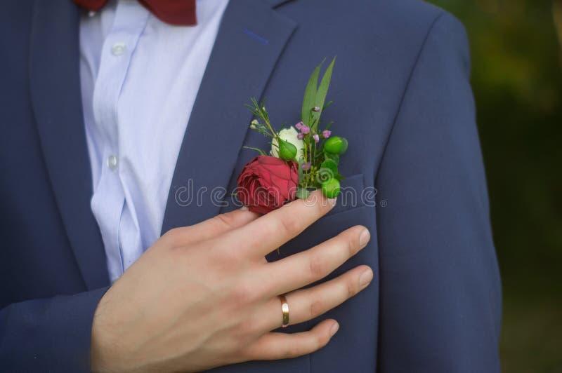 Chiuda su dello sposo in vestito blu e del farfallino di Borgogna che regola la rosa rossa in occhiello immagine stock libera da diritti