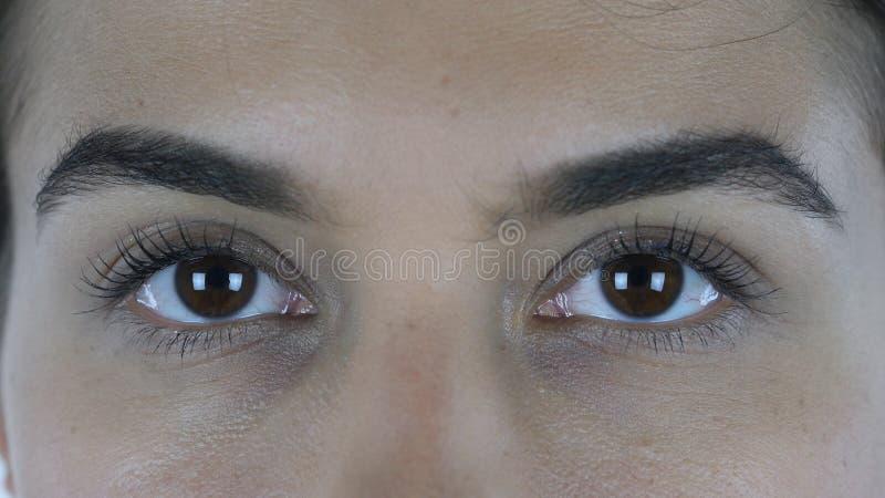 Chiuda su di bei occhi femminili, guardando in camera fotografie stock libere da diritti