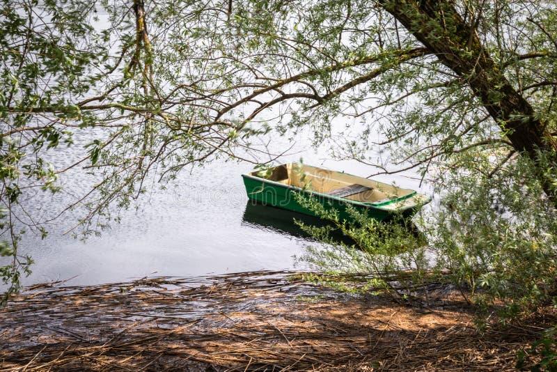 Chiuda su di bella imbarcazione a remi isolata sul cerknica intermittente del lago, vada trasporto verde di concetto, Slovenia fotografia stock libera da diritti