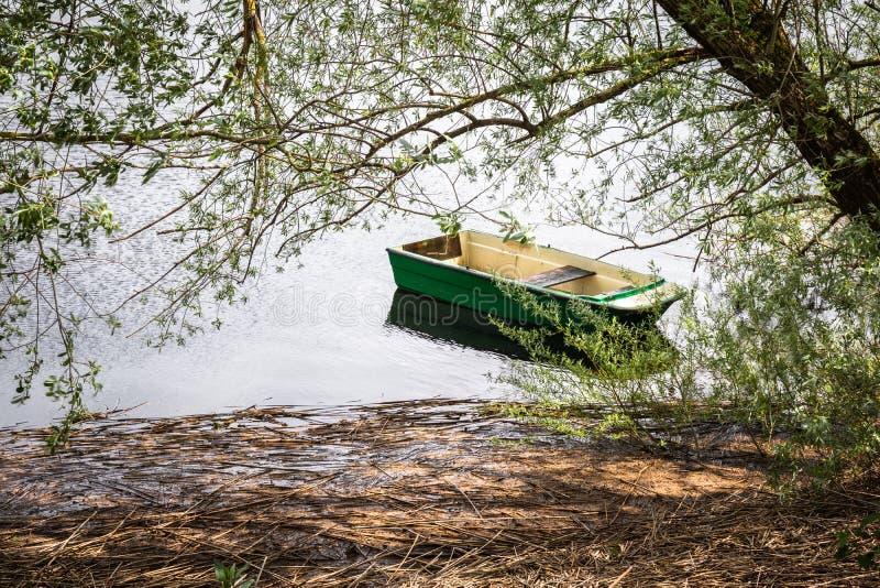 Chiuda su di bella imbarcazione a remi isolata sul cerknica intermittente del lago, vada trasporto verde di concetto, Slovenia fotografie stock libere da diritti