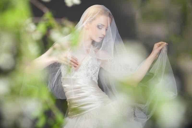 Chiuda su di bella sposa bionda vaga fotografia stock libera da diritti