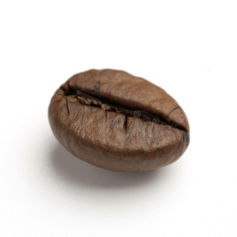 chiuda su di due chicchi di caffè arrostiti buio del commercio equo e solidale immagini stock libere da diritti