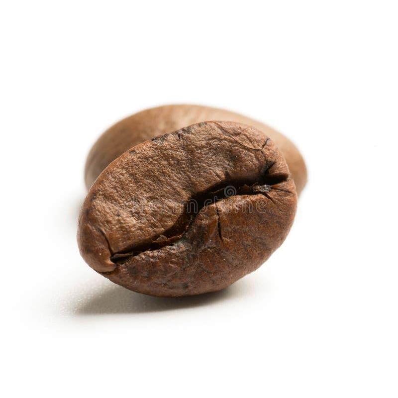 chiuda su di due chicchi di caffè arrostiti buio del commercio equo e solidale fotografie stock