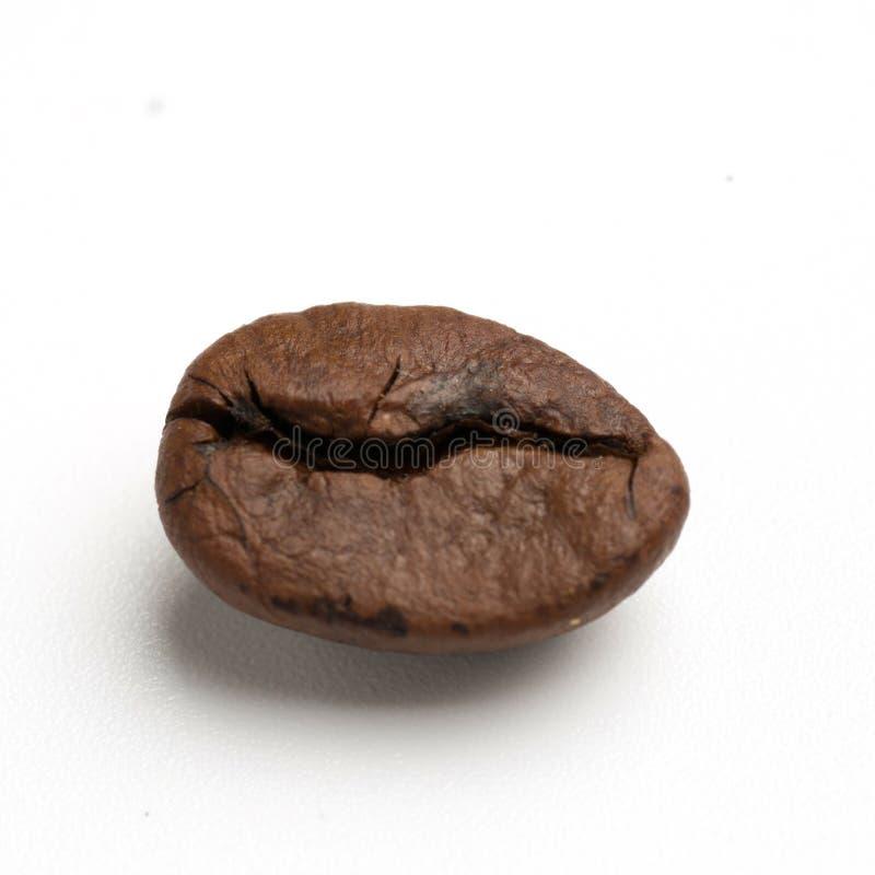 chiuda su di due chicchi di caffè arrostiti buio del commercio equo e solidale immagine stock
