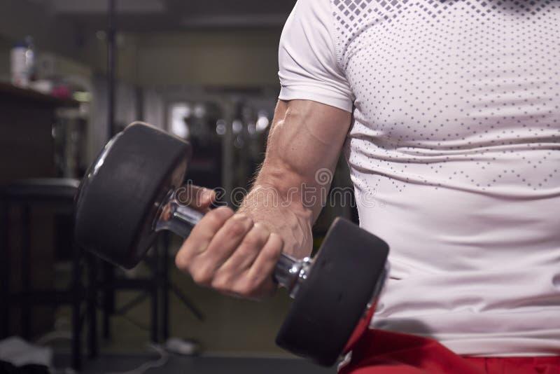 Chiuda su di forte braccio muscolare, il muscolo del bicipite, una testa di legno della tenuta dell'uomo fotografia stock