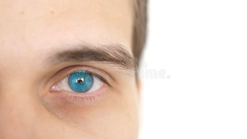 Chiuda su di un occhio maschio Dettaglio di un occhio azzurro di un uomo che esamina macchina fotografica su un fondo bianco fotografia stock