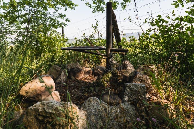 Chiuda su di un posto del fuoco vicino alla vigna fotografia stock libera da diritti