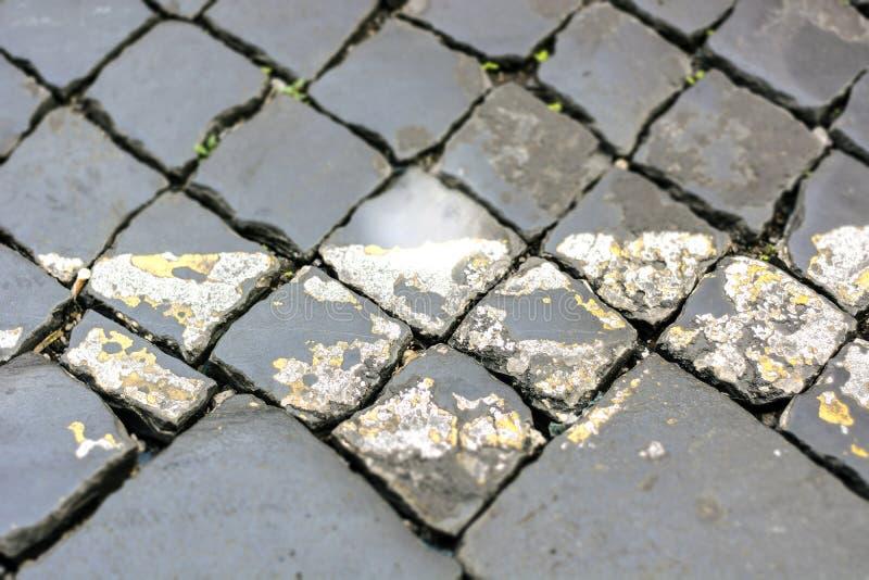 Chiuda su di una via romana tipica fatta con ciottolo fotografie stock libere da diritti