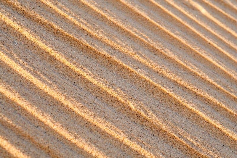 Chiuda su macro struttura della duna di sabbia fotografia stock