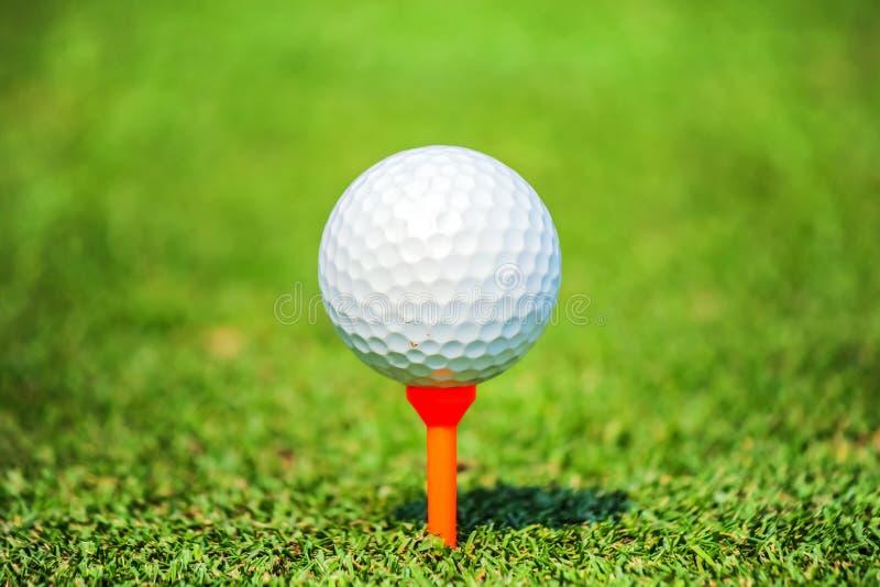 Chiuda su palla da golf con il T fotografie stock libere da diritti