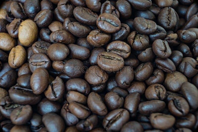 Chiuda su sui fagioli di un coffe fotografia stock