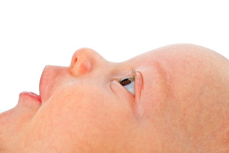Chiuda in su sul fronte del bambino fotografia stock libera da diritti