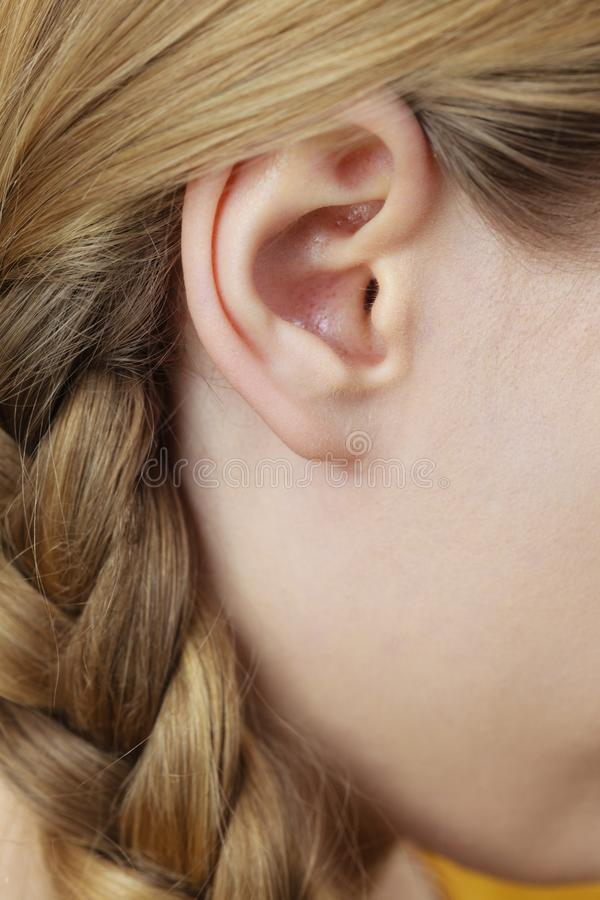 Chiuda su sull'orecchio e sui capelli femminili della treccia fotografia stock libera da diritti