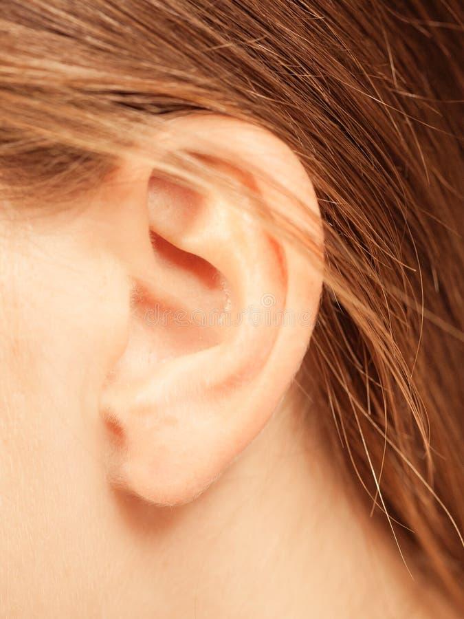 Chiuda su sull'orecchio femminile fotografia stock