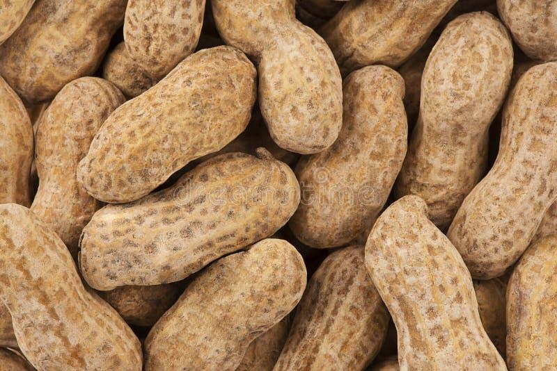 Chiuda su sulla pila di arachidi come fondo astratto fotografia stock libera da diritti