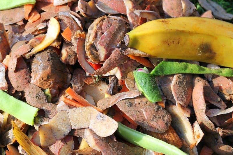 Chiuda sui contenuti del recipiente di composta riciclaggio fotografie stock libere da diritti