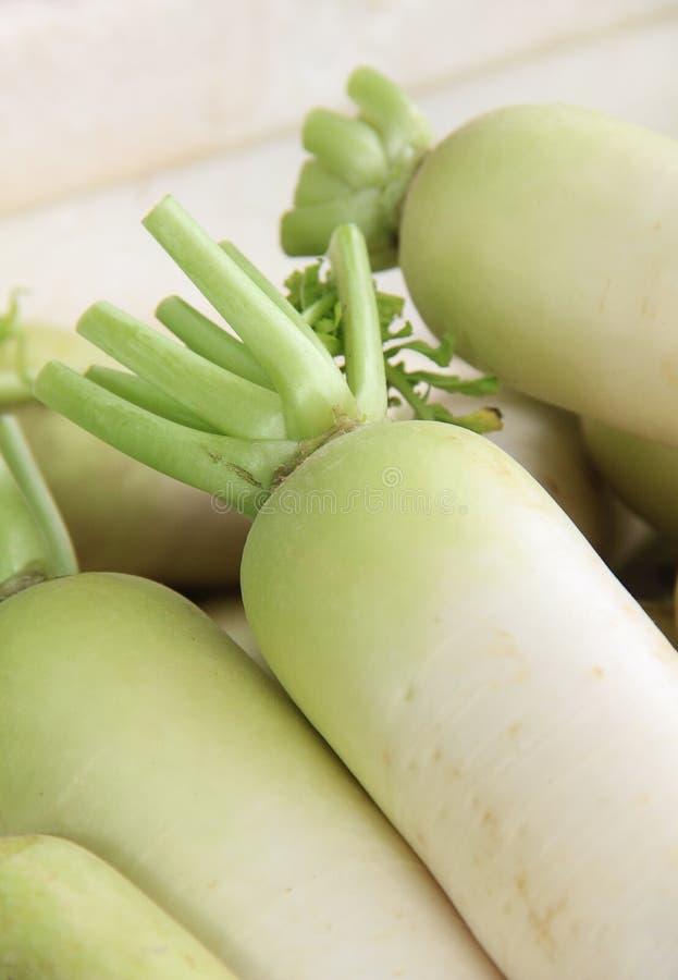 Chiuda sui ravanelli bianchi indiani sul mercato. fotografia stock libera da diritti