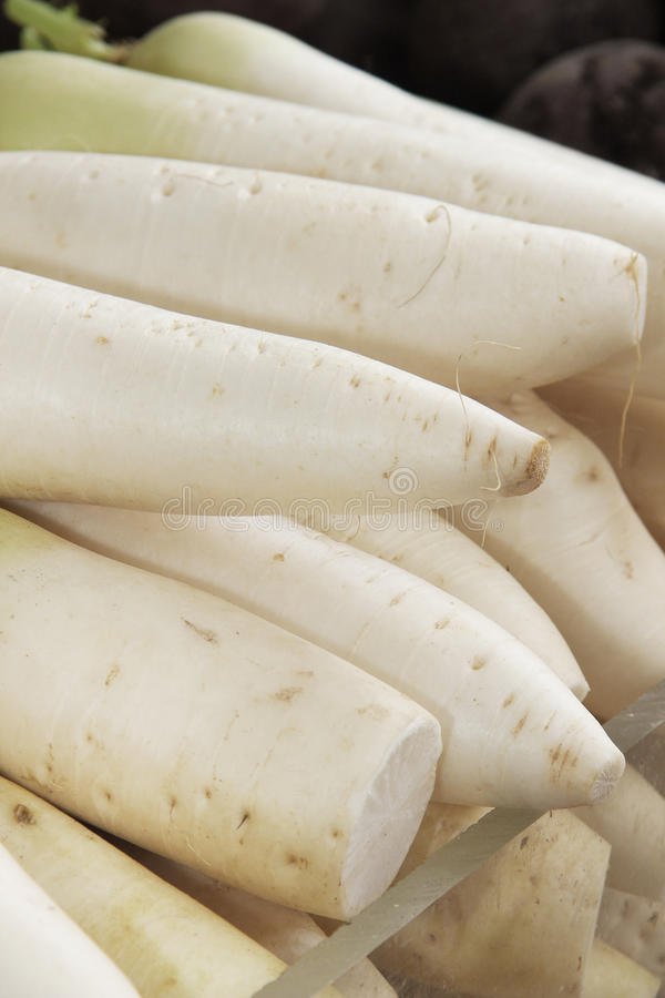 Chiuda sui ravanelli bianchi indiani sul mercato. immagini stock
