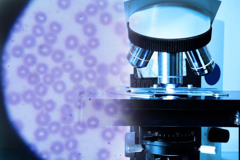 Chiuda sul colpo del microscopio al laboratorio del sangue e dei globuli rossi sotto il microscopio fotografia stock libera da diritti