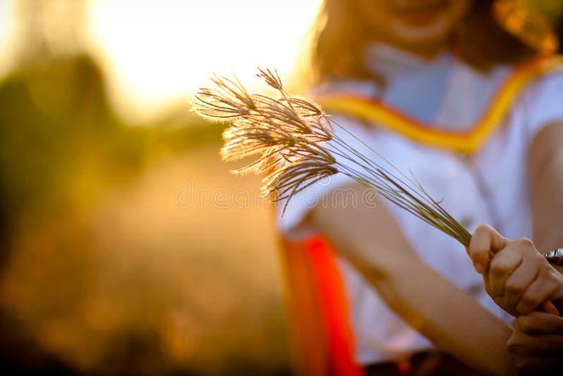 Chiuda sul fiore dell'erba innestato in mano dei girl's fotografia stock libera da diritti