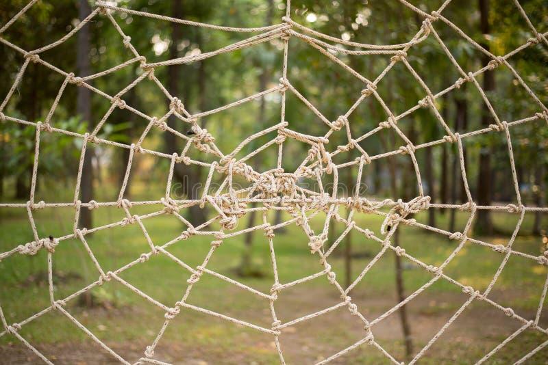 Chiuda sul legame della corda fanno alla mussola della ragnatela sul parco immagine stock