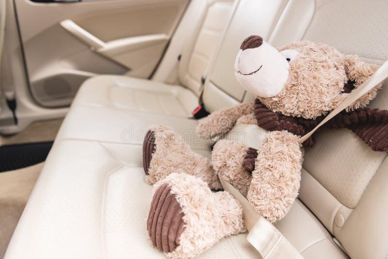 chiuda sul punto di vista dell'orsacchiotto con la cintura di sicurezza fissata fotografie stock libere da diritti