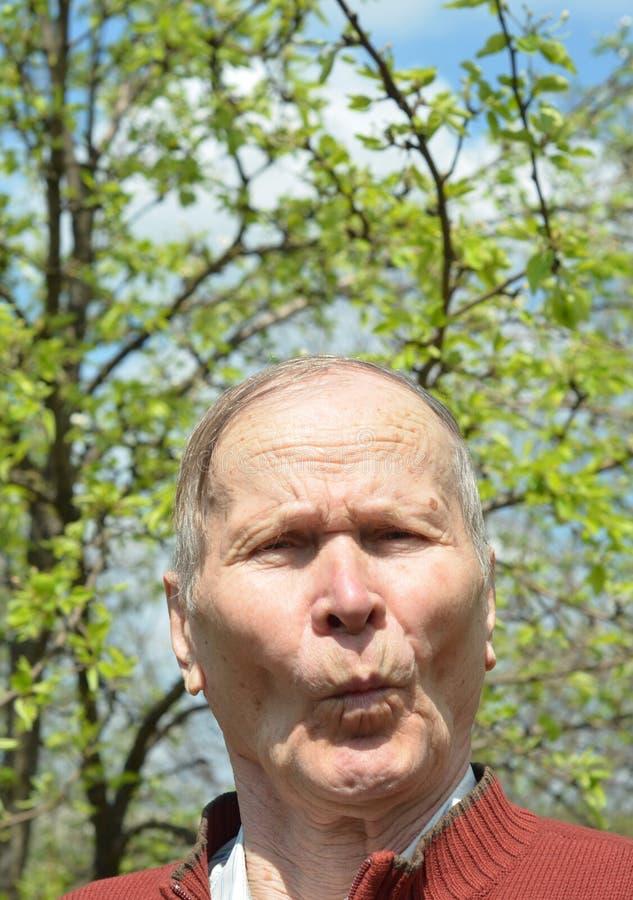 Chiuda sul ritratto dell'uomo senior divertente in giardino che esamina la macchina fotografica fotografia stock libera da diritti