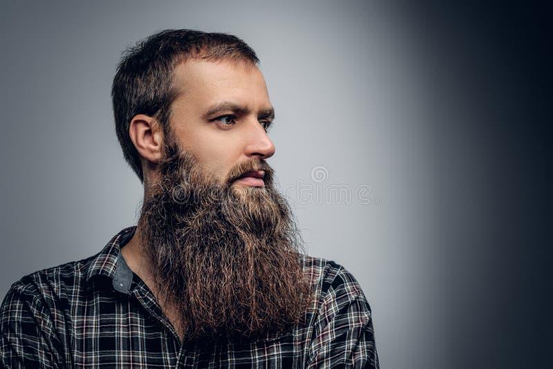 Chiuda sul ritratto dello studio del maschio barbuto vestito in uno shir del plaid immagine stock