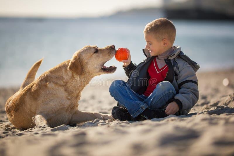 Chiuda sul ritratto di giovane ragazzo che collabora con il suo cane sulla spiaggia immagini stock