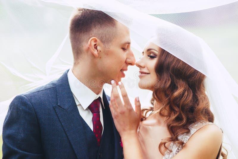 Chiuda sul ritratto romantico di belle coppie di nozze sotto il velo immagine stock libera da diritti