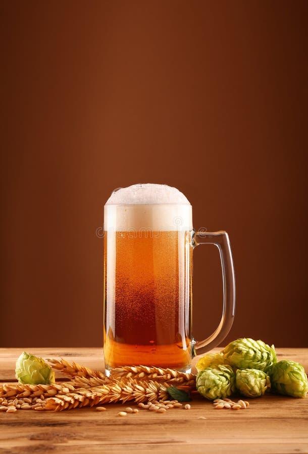Chiuda sul vetro, sul luppolo e sull'orzo di birra sopra marrone immagine stock