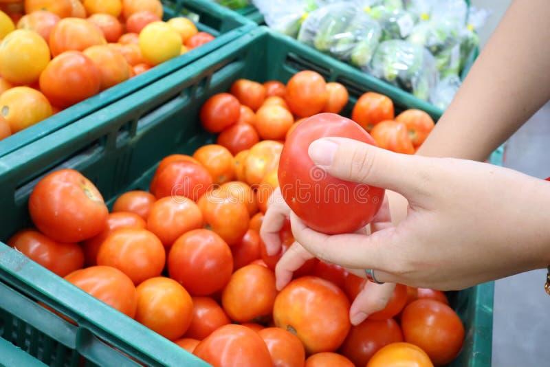 Chiuda sul woman& x27; mano di s che tiene i pomodori di selezione di verdure al mercato di cottura fotografia stock