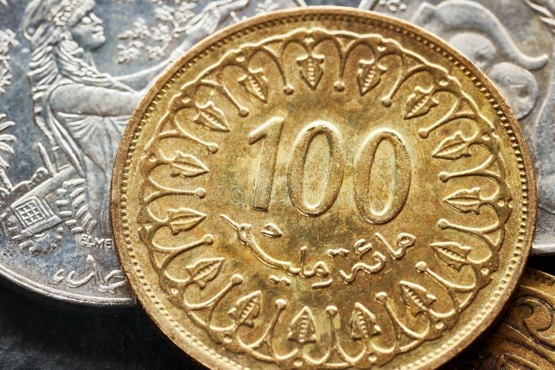 Chiuda sull'immagine dei dinari tunisini fotografia stock