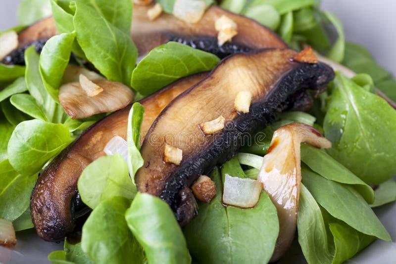 Chiuda sull'insalata del fungo di Portabella immagini stock