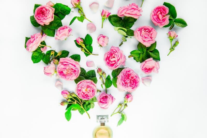 Chiuda sulla disposizione creativa con la bottiglia di profumo e piloti fuori i fiori rosa del tè rosa su fondo bianco isolato Co fotografie stock