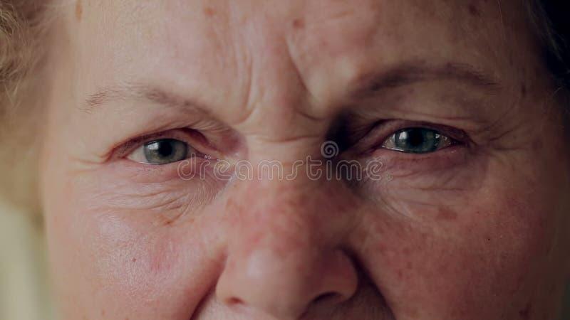 Chiuda sulla foto dell'occhio anziano della donna Ritratto senior, donna anziana felice con gli occhiali che sorride e che esamin video d archivio