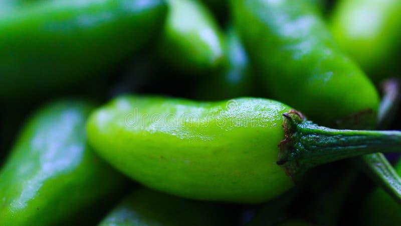 Chiuda sulla macro immagine dei peperoncini rossi verdi con umidità sul suo surfac fotografie stock libere da diritti