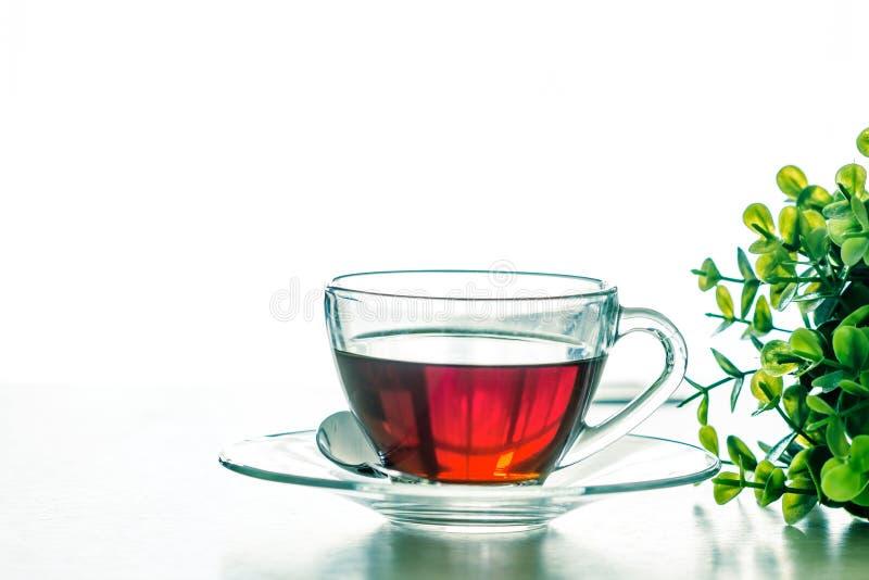 Chiuda sulla tazza di tè nero calda sulla tavola di legno in ro vivente immagini stock